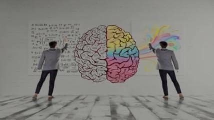 7 мита за мозъка в които много преподаватели вярват