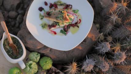 Печен червен луциан със салца верде   Мексиканска фиеста с Питър Курувита   24Kitchen Bulgaria