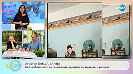 """Андреа Банда-Банда представя горещите новини от социалните мрежи - """"На кафе"""" (17.02.2020)"""