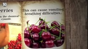 10 Отровни Храни които обичаме да ядем