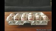 Яйца гледат как се пържат яйца
