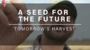 A Seed For Tomorrow