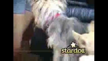 Hilary Duff - Stardoll - Episode 9