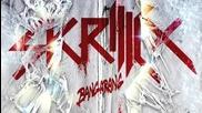 Skrillex ft The Doors - Breakn A Sweat