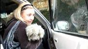 Непознат намери сляпо куче, което живее в боклука, но аз не очаквах това, последва!