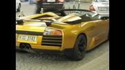 Дубай Коли 2010