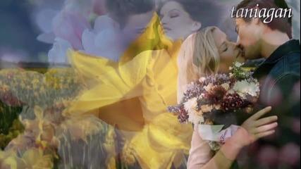 Мечтана Жена - Ирина Василева