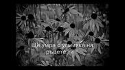 Sinan Sakic - Umrecu S Osmehom Превод