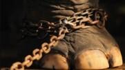 50 години слонът е бил окован. Само вижте, какво е направил, след като са го освободили