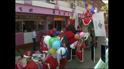 Слонове, облечени в коледни костюми, зарадваха децата в Тайланд