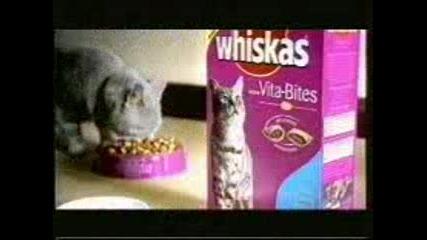 Реклама - Whiskas Бънджи