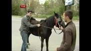 Aйтос Aйдол - Иван язди кон [hq]