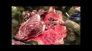 с. Златар - лов на диви свине - 10.10.2010 г.