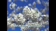 Честита Пролет На Всички ! :)