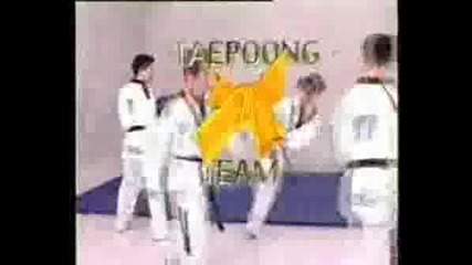 Taekwondo The Art Of Kicking