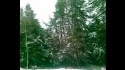 роси на снега