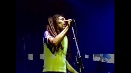 Светът отбелязва 70 години от рождението на реге иконата Боб Марли