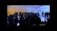 Сашо Димитров - Странници в нощта
