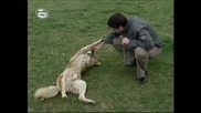 Music Idol 2 - 04.04.08г. - Иван Ангелов Се е усамотил в парка и  комуникира с добродушно кученце и споделя мисли!!!