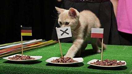 Дали Левандовски ще накаже Германия? Разберете какво предрече Жо Тем!