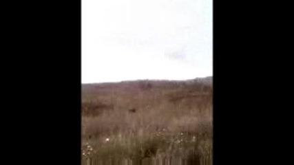 Crazytown - Butterfly - gleedka ot balkana [sun]