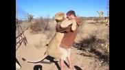 Любов между лъв и човек