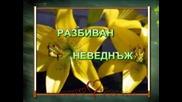 Покана За Приятел - Паула Петрова