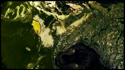 2o12 • Страхотна• Edward Maya ft. Violet Light - Love Story+ Превод