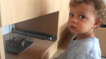 Искам да пипна мишето! Моля те.. за малко!
