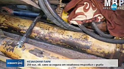 НЕЗАКОННИ ПАРИ: 250 000 лв. само за година от незаконна търговия с дърва