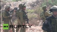 State of Palestine: Clashes erupt as Palestinian students protest against Israeli attacks in West Bank