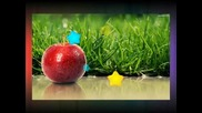 Wisit Jablko - (prymaki)