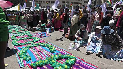 Bolivia: Hundreds of growers aim for coca chewing world record at La Paz event