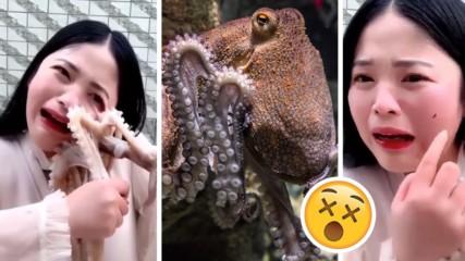 В името на онлайн славата: Влогърка пробва да яде жив октопод, той я нападна!