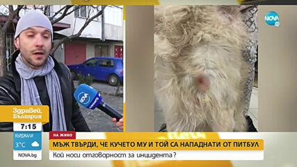 Мъж твърди, че той и кучето му са били нападнати от питбул