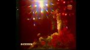 Ваза С Цветя - Кичка Будурова