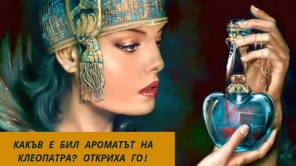 Какъв е бил ароматът на Клеопатра? Откриха го!
