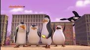 Пингвините от Мадагаскар ep26