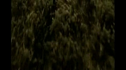 Harry p0tter trailer - Is The best =)