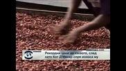 Рекордни цени на какаото заради кризата в Кот д`Ивоар