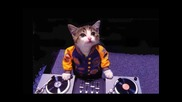 Hayatı Tesbih Yapmısım Mix Mistir Dj Turkish Pop Mix Bass 2016 Hd