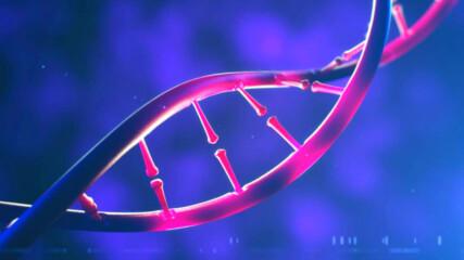 Колко трайна е ДНК