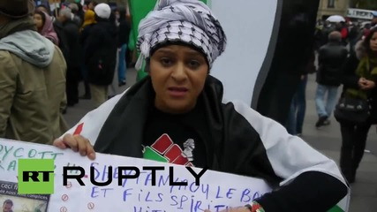 France: Hundreds rally in Paris in solidarity with Palestine
