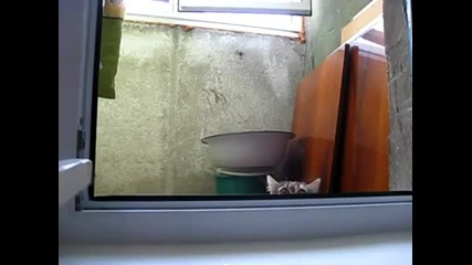 Виждам те !