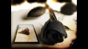 Respect - Za Teb..искам да бъда с теб...искам да си до мен...!здравей ти казах но сбогом  ти няма да чуеш от мен!!