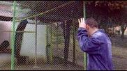 Педри в зоопарка