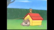 Tom & Jerry  -  The Dog House