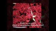 Антипас - Миличка моя Честит Рожден Ден, Neli_731