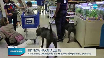 Питбул нахапа 4-годишно дете в София