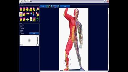 Уголемяване и Намаляване на мускули с Photoinstrument